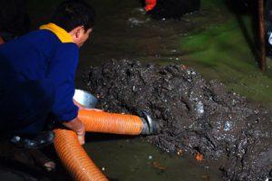 Vận Chuyển Bùn Vi Sinh giá rẻ nhất, cung cấp bùn 100%